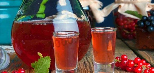 рецепты приготовления вина из красной смородины в домашних условиях
