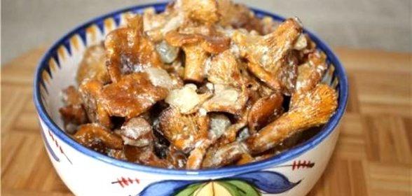 лисички в сметане рецепт с фото готовим