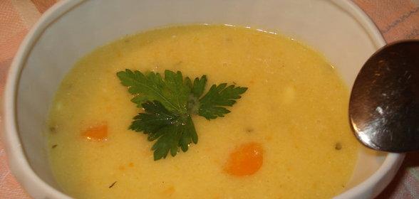 Протертые диетические супы с фото