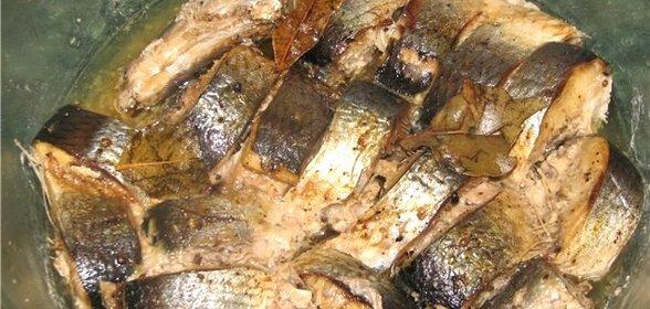 Пошаговый Очень простой Рецепт Рыбных консервов в скороварке с фото для приготовления в домашних условиях