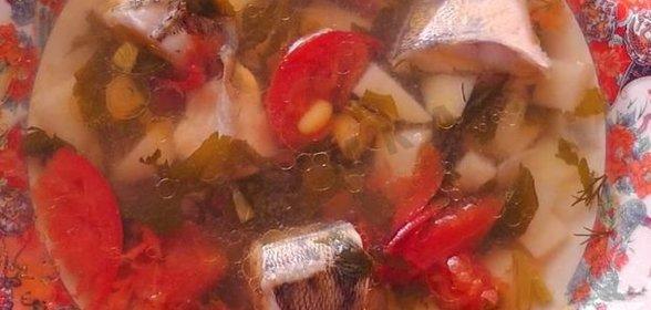 Уха из судака пошаговый рецепт